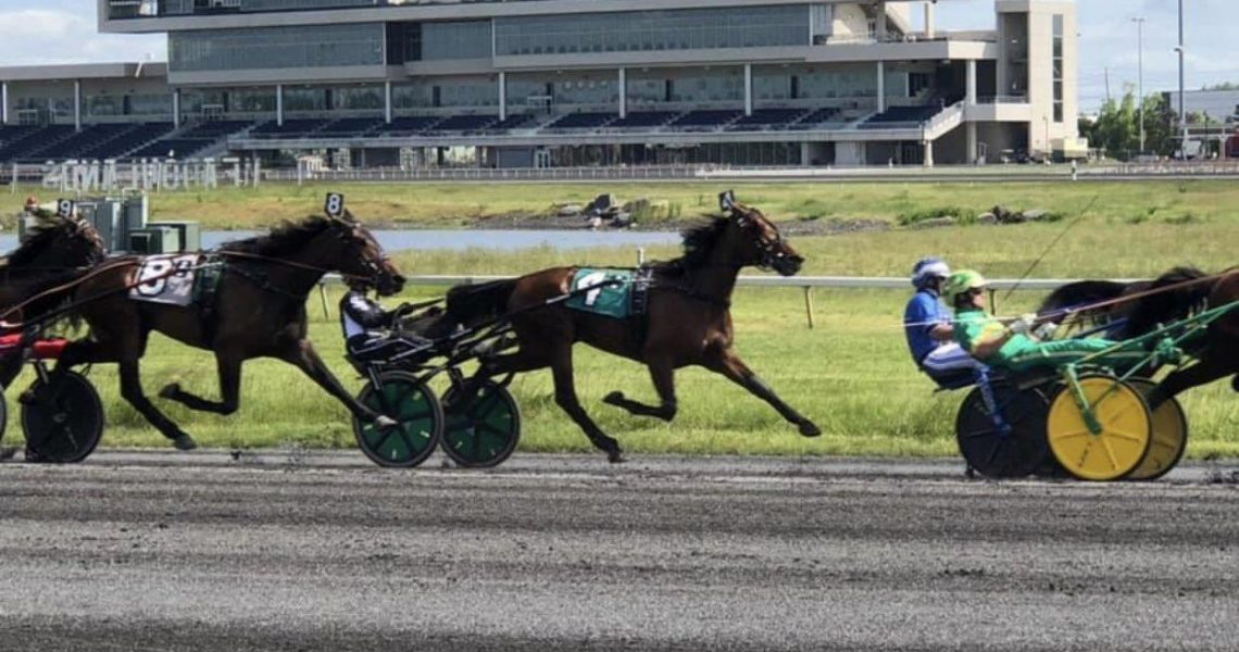 Meadowlands Racetrack Staying Busy in 2021